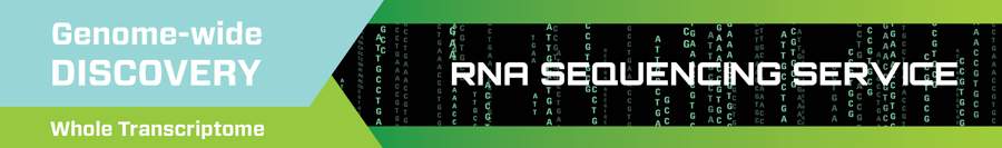 RNA Sequencing Service